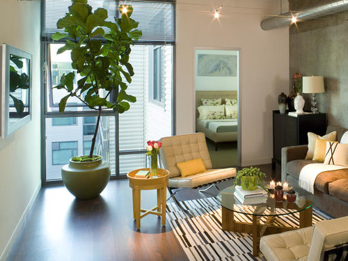 decor,design,livingroom,loft,tree-ba7a04888b0ad6fbf2619ae307229898_h