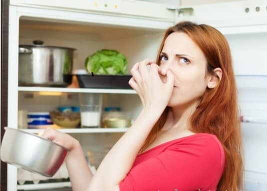 Tác dụng khử mùi của máy ozone